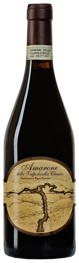 Terre di Leone, Amarone della Valpolicella Classico DOCG, 2007