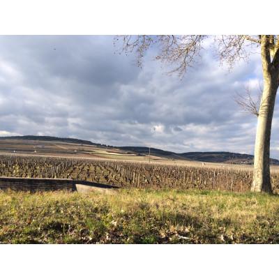 Les Grands Jours de Bourgogne 2016