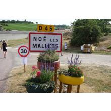 Noe Les Mallets